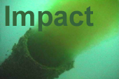 Environmental impacts icon
